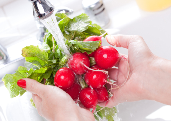 How To Prevent Bacteria Contamination On Your Food?