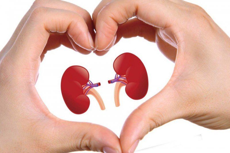 Small Steps to Take Care Of Your Kidneys