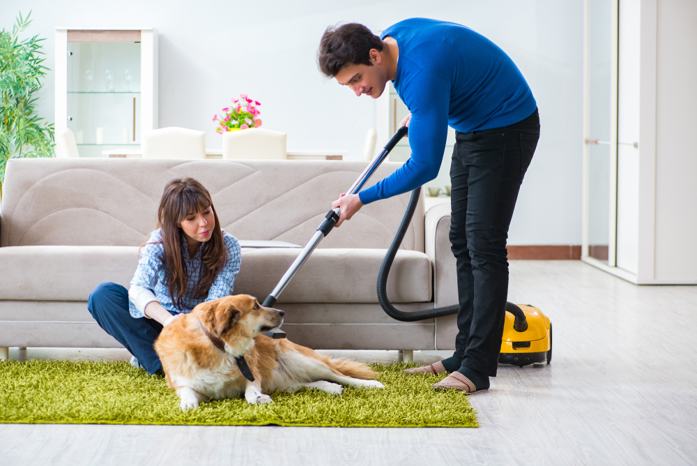 Tips for Cleaning Dog Hair Easily