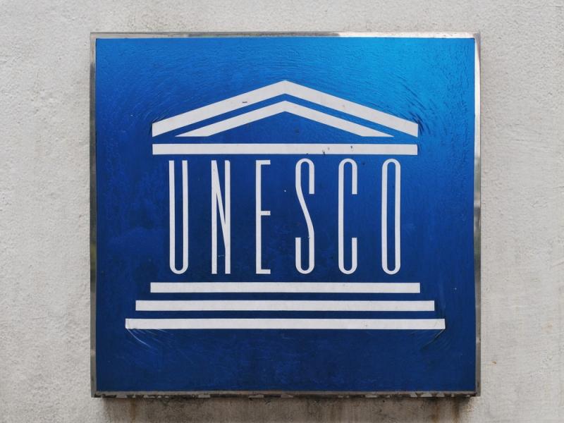 What Makes a UNESCO Ambassador?