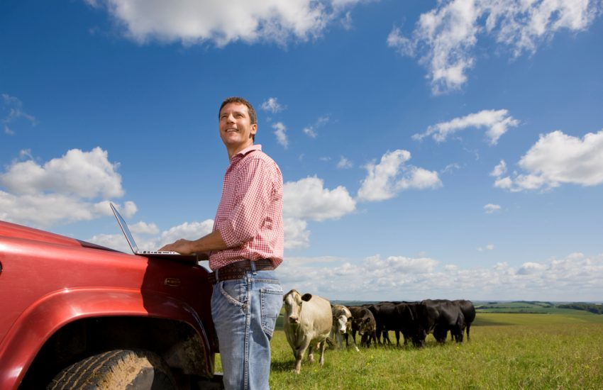 How to Improve Cattle Record Keeping